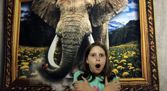 Inedită și unică experiență pentru ieșeni în luna ianuarie: Muzeul Iluziilor Optice